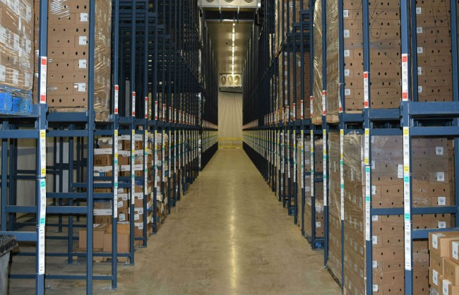 Frozen Storage, Cold Storage, Freezer Storage